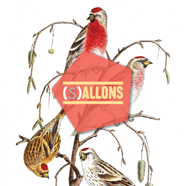sallon-nov16_thumb
