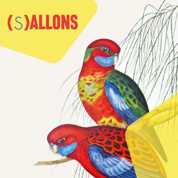 SALLONS_THUMB